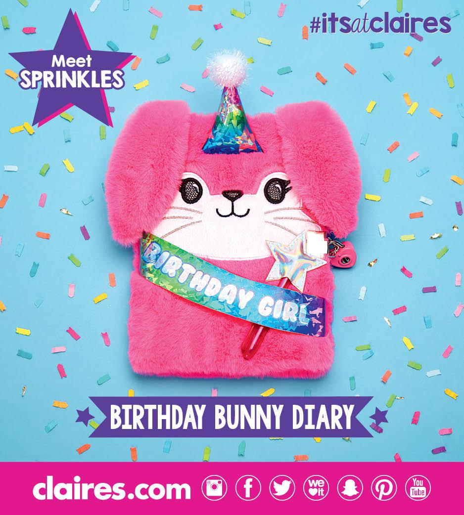 Birthday Bunny Plush Diary